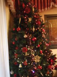 دورة الميلاد 2 - 2014