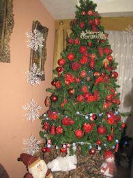 دورة الميلاد - عكا وجديدة 2013